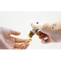 Эфирное масло мяты перечной: свойства и способы применения для волос, кожи, здоровья